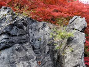 石山寺・硅灰石
