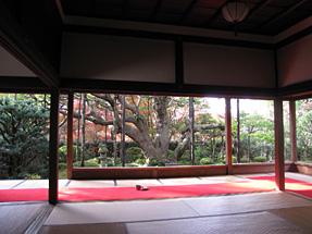 宝泉院・額縁庭園