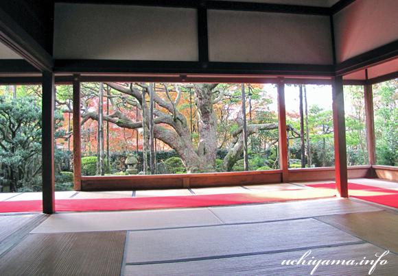 京都・宝泉院