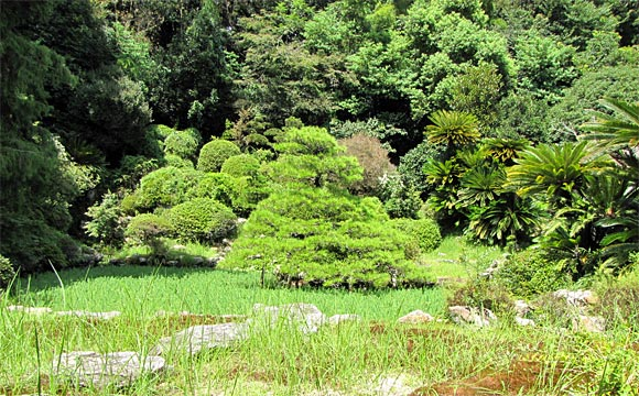 本興寺・小堀遠州作の庭園