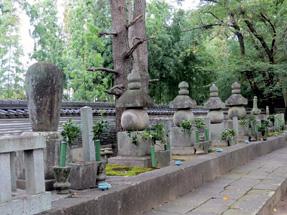 大樹寺・松平八代墓
