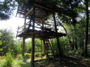 医王寺山砦跡