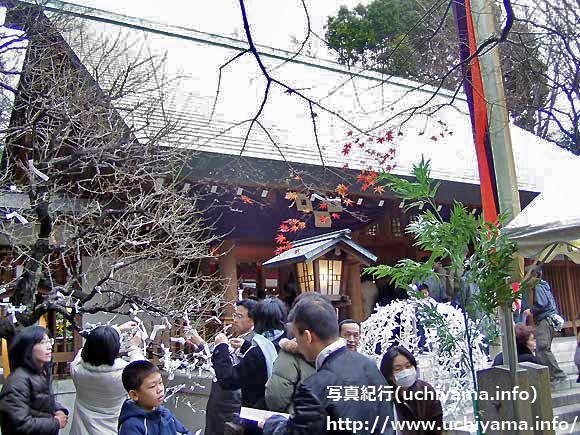 元旦の乃木神社