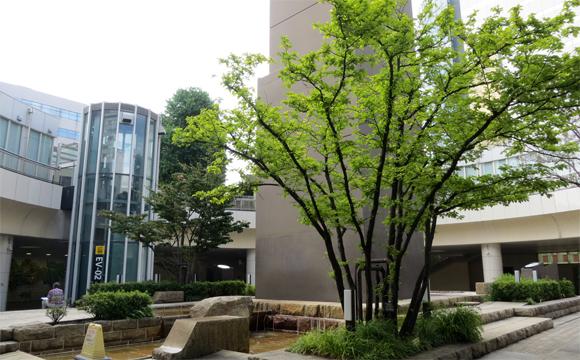 浜松駅前バスターミナル