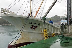 田ノ浦漁港