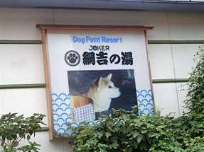 犬専用温泉