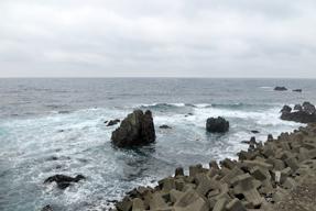 土佐サンゴ発祥の地