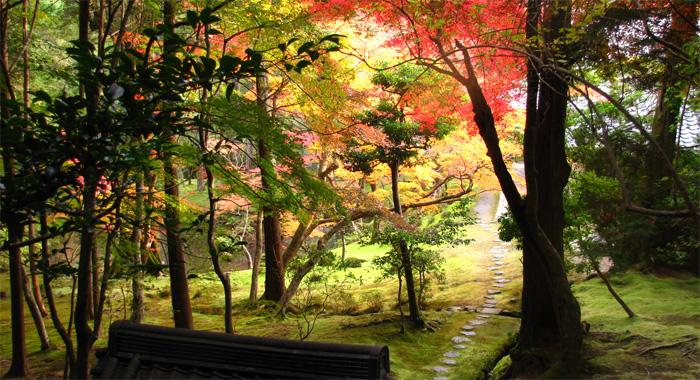 京都・西芳寺(苔寺)
