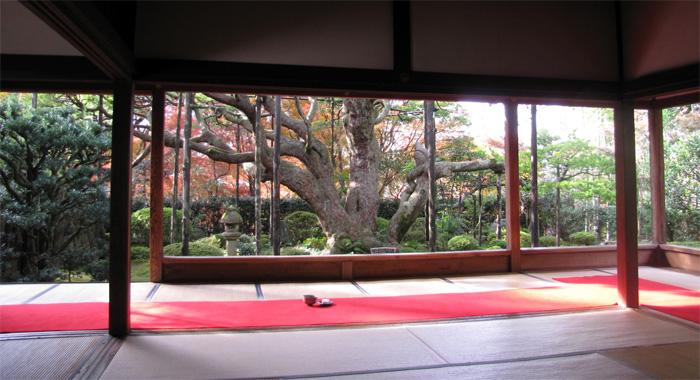 京都(大原)・宝泉院