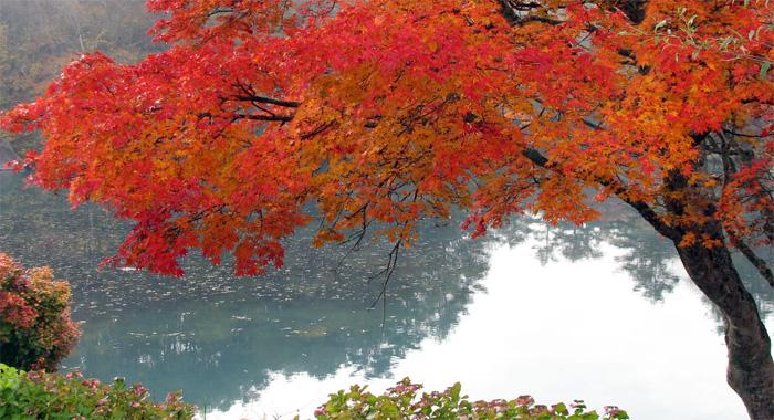福島・五色沼