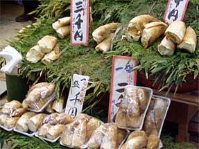 京都のタケノコ