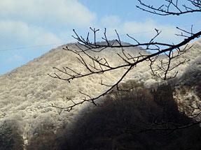 宇奈月からの山