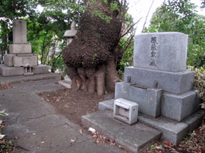 後藤新平の墓