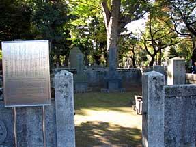田中芳男の墓
