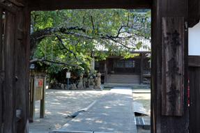 赤坂宿・浄泉寺