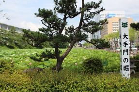 久保田城・大手門の堀