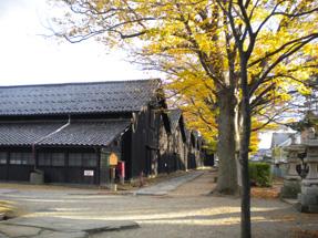 山居倉庫・欅並木
