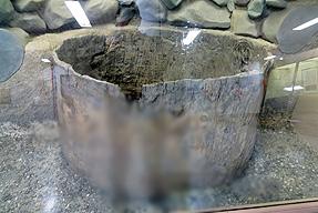 神泉苑・石組み井戸