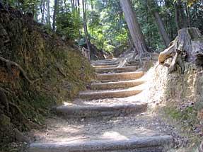 天王山・登山道