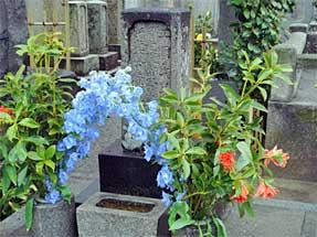 正岡氏累代の墓