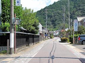 春野町・すみれ街道
