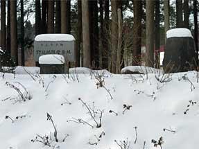 野辺地防雪原林の碑