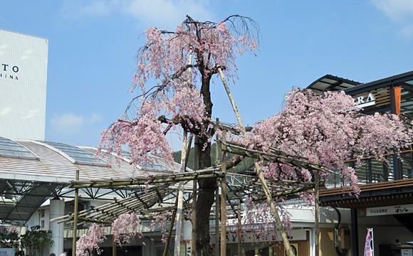 JR山科駅前
